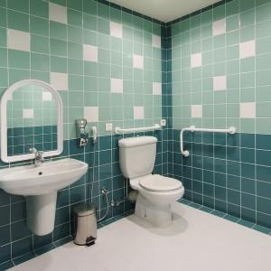 bigstock-Handicap-Toilet-21912980